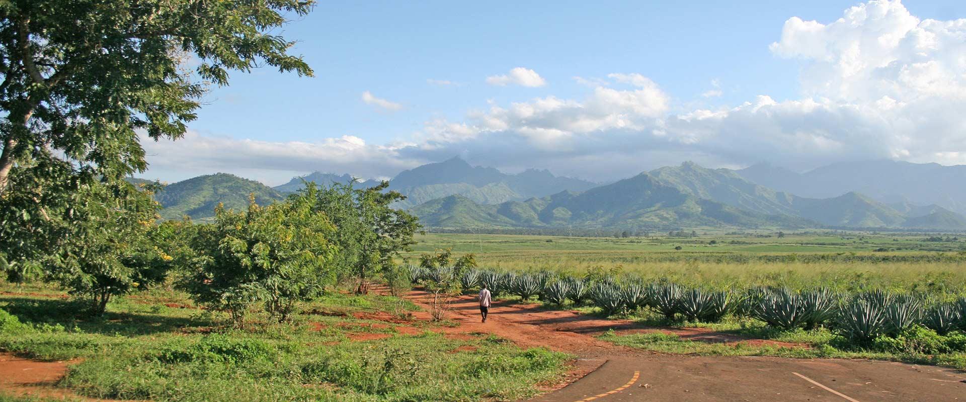 3 Day Mount Uluguru