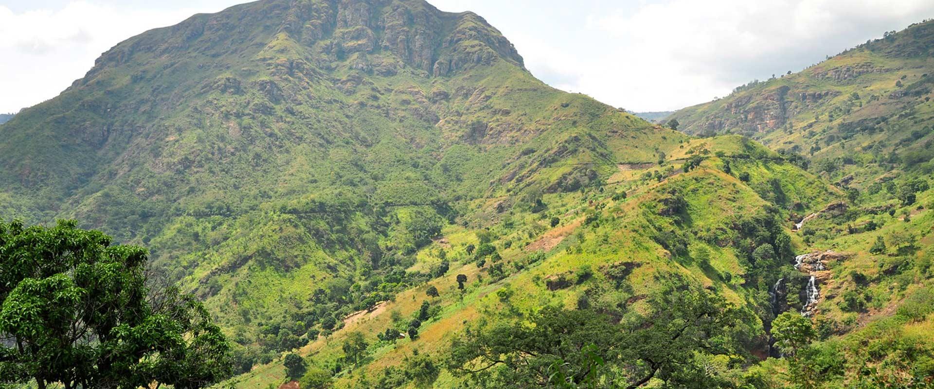 4 Days Mount Usambara
