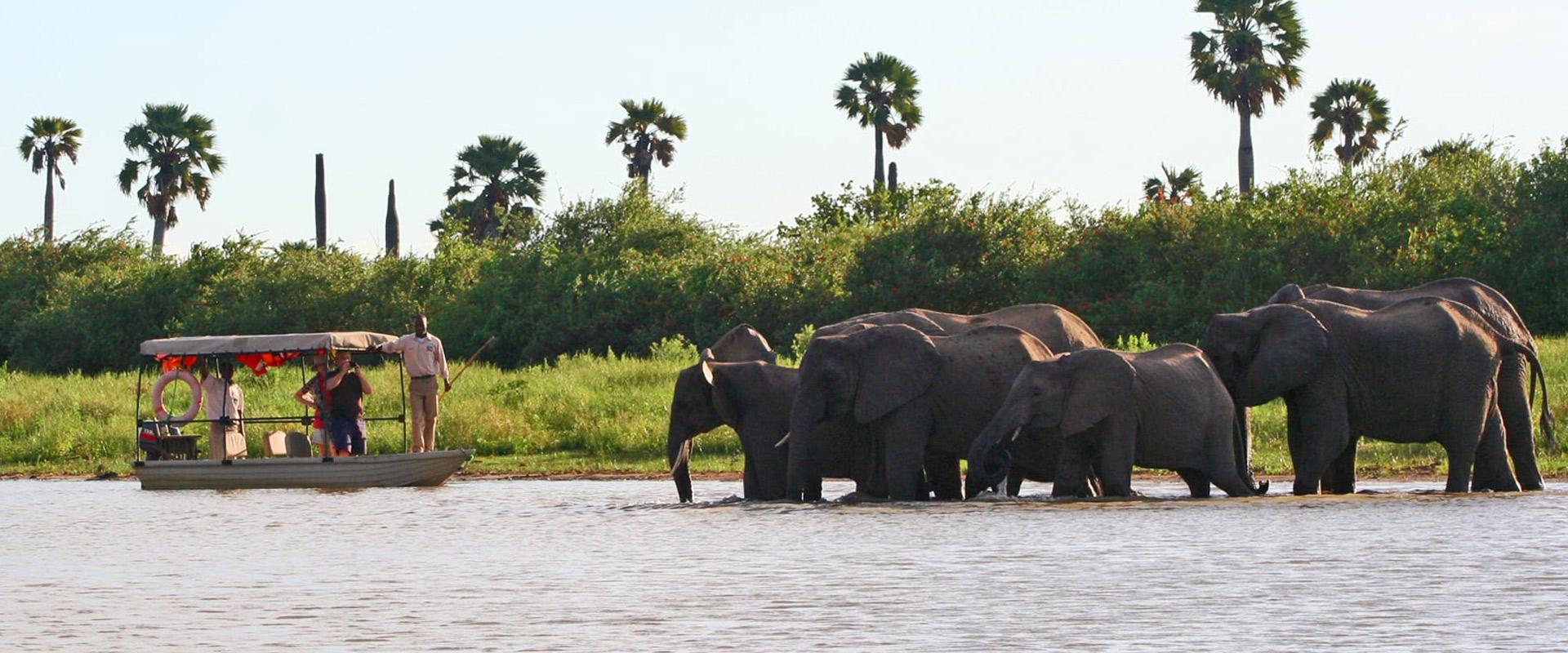 5 Days Tanzania Safari to Nyerere National Park and Kilwa