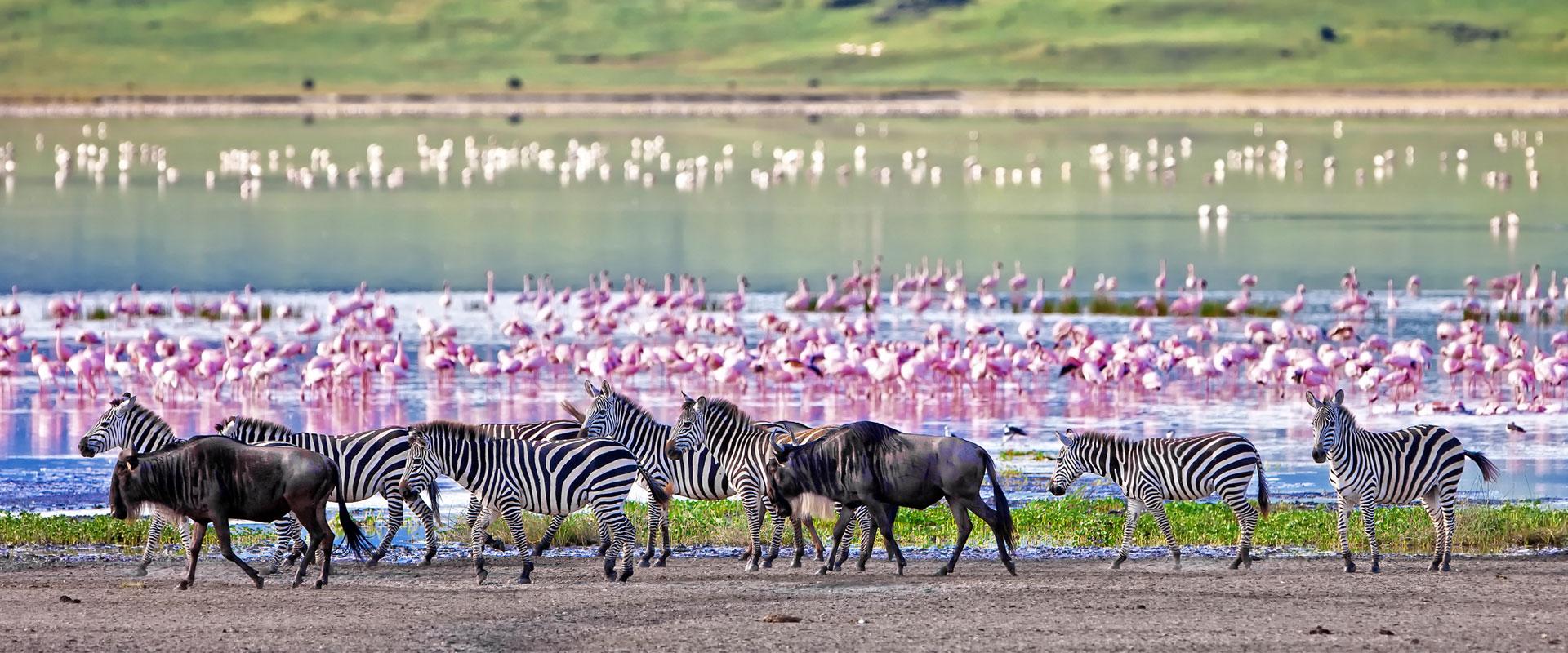 tanzania-destinations-fullwidth