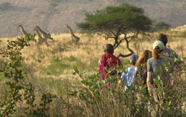 Tanzania Tipping Guide