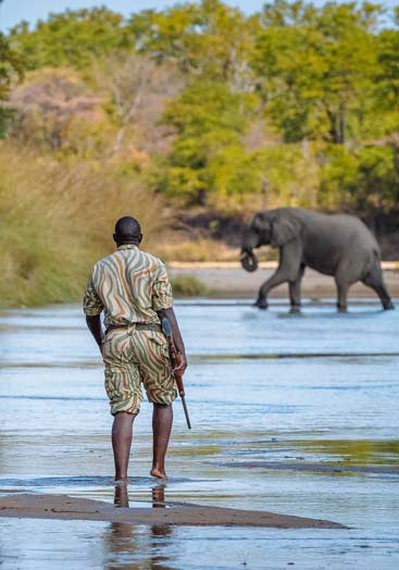 6 days tanzania southern safari